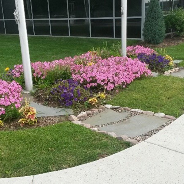 Sj Landscapes And Gardening Services: Western New York's #1 Residential Landscaping Experts